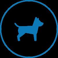 Mascota